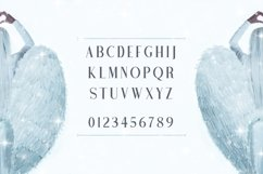 Web Font Angel Wings Product Image 2