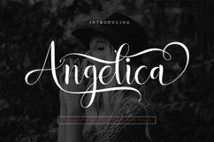Angelica Product Image 2
