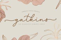 Gatkins - Elegant Script Product Image 1