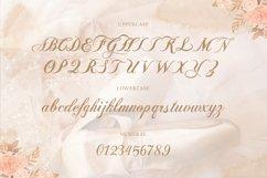 Balleria - Lovely Modern Script Product Image 6