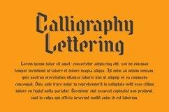 Web Font Needle Master Display Font Product Image 3
