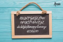 Xenia Family Typeface Product Image 5