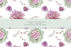 Succulents Seamless Patterns Product Image 15