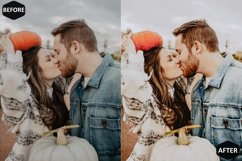 Pumpkin Photoshop Actions And ACR Presets, Fall preset Product Image 3
