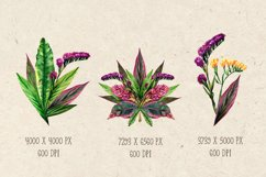 Watercolor bouquets of tropical leaves and flowers. Vintage Product Image 2