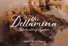 Dellamina Product Image 1
