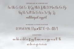 Barkelia Lovely Script Product Image 10