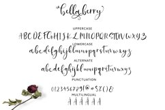 BellaBerry Lovely Script Font Product Image 5