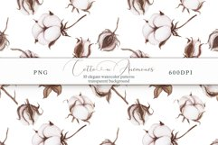 Cotton & Anemones Seamless Patterns Product Image 10
