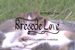 Bregede Love Product Image 1