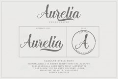 12 graceful charming fonts Product Image 5