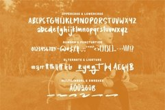 Web Font Brody - A Brush Fancy Font Product Image 4
