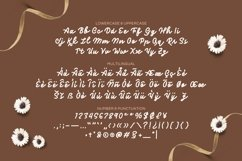 The Frosan Display Font Product Image 4