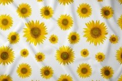 Sunflower. JPG, PNG. Product Image 4