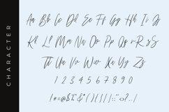 Harritton Modern Script Font Product Image 2