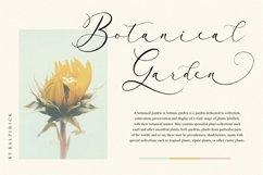 Arletta Stylist Modern Script Font Product Image 2