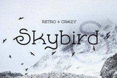 Skybird - Crazy, unique & retro Product Image 1