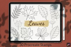 30 Leaves Stamp Brushes for Procreate, Autumn Collection Product Image 1