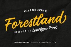 Forestland Product Image 1