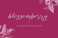 Blossomberry Script Font Product Image 1