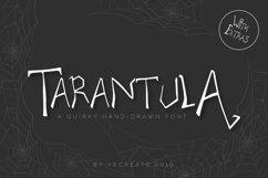 Tarantula   Spooky Creature Display Font Product Image 1