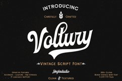 Voltury 4 fonts with extras Product Image 1