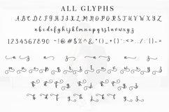 Pruistin Script Product Image 6