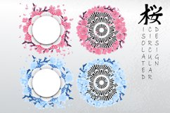 Vector cherry blossom collection Product Image 3