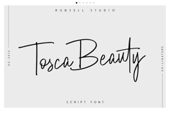 Tosca Beauty Handwritten Font Product Image 1