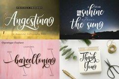 Best Seller Calligraphy Font Bundle Product Image 8