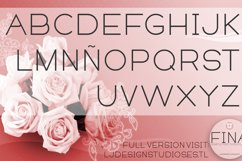 Fina Font Product Image 2