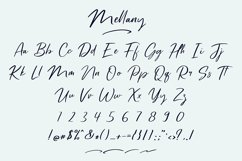 Mellany Modern Script Font Product Image 6