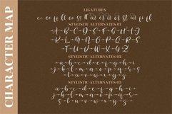 Butterfly Glorista - Beautiful Script Font Product Image 3