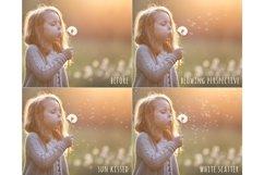 Blowing dandelion seeds photoshop overlays Product Image 3