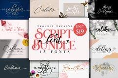 Script Font Bundle Product Image 1
