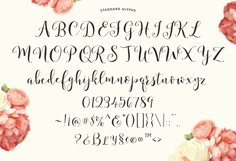 Storybook Calligraphy Product Image 6