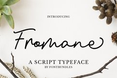 Web Font Fromane Product Image 1