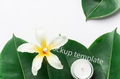 Wellness spa mockup template green leaves flower candle Product Image 1