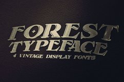 Forest - Display Font Product Image 2