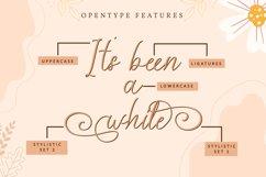 Veeolyn   Handwritten Script Font Product Image 2