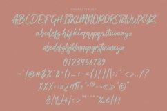 Deloissta Script Font Product Image 11