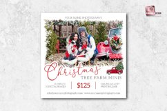 5x5 Christmas Tree Farm Mini Sessions Template Product Image 1