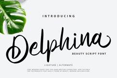 Delphina | Beauty Script Font Product Image 1