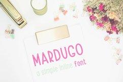 Font Bundle 5 Exclusive Fonts!  Product Image 3