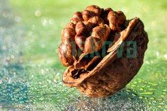 Walnut. Light green background. Macro. Product Image 1
