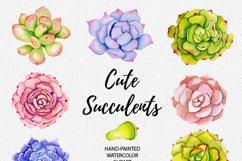 Succulents watercolor clipart Product Image 2