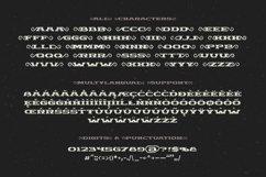 Chimera Tail, font + illustration Product Image 5