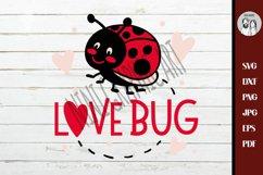 Love bug svg, Ladybird beetle svg, Lady Bug Svg, Product Image 3