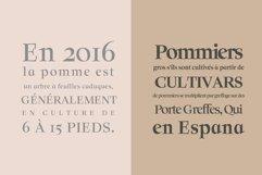 Solomon Serif Font Family Product Image 3