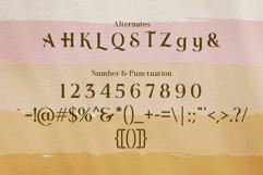 Romerio | Elegant Serif Style Product Image 4